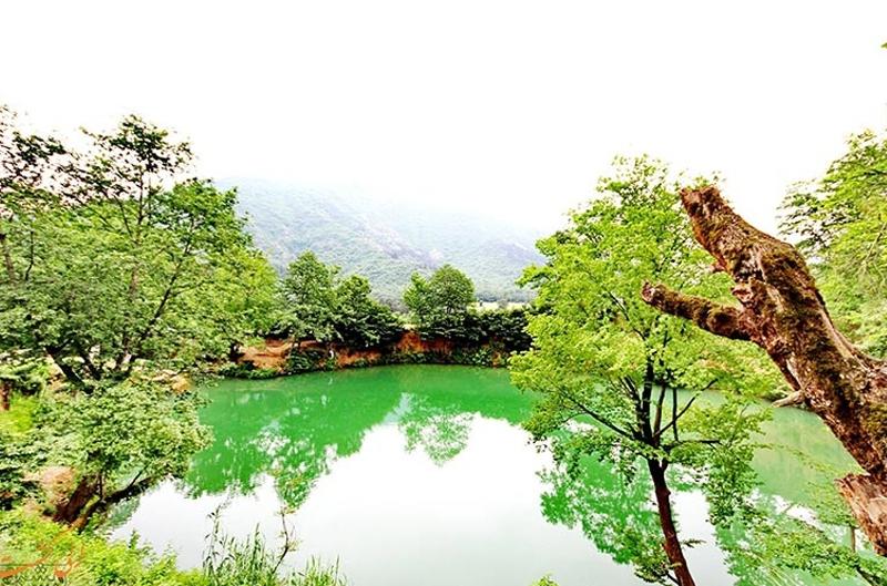 چشمه گل رامیان (3)